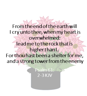 Book of Psalms | You Are Not the Only One Ministries and