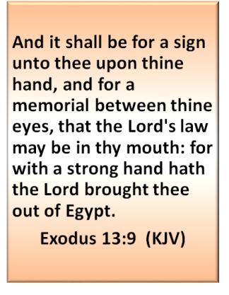 exodus 13 9
